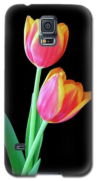 Tulip Duo Galaxy S5 Case