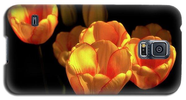Tulip Festival Participants Galaxy S5 Case