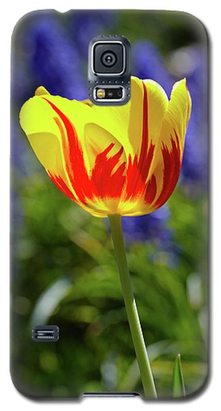 Tulip Flame Galaxy S5 Case