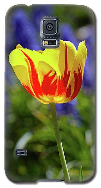 Tulip Flame Galaxy S5 Case