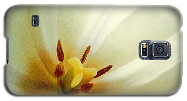 Galaxy S5 Case featuring the photograph Tulip Glow by Gwyn Newcombe