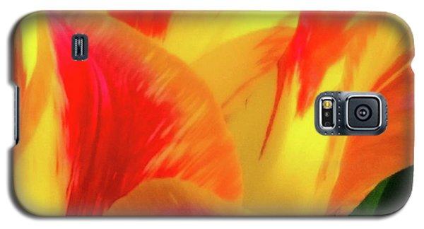 Tulip In Bloom Galaxy S5 Case
