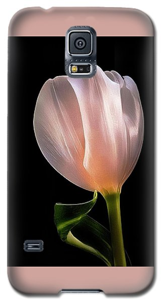 Tulip In Light Galaxy S5 Case