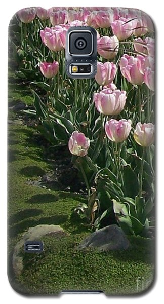 Galaxy S5 Case featuring the photograph Tulip Parade by Jolanta Anna Karolska