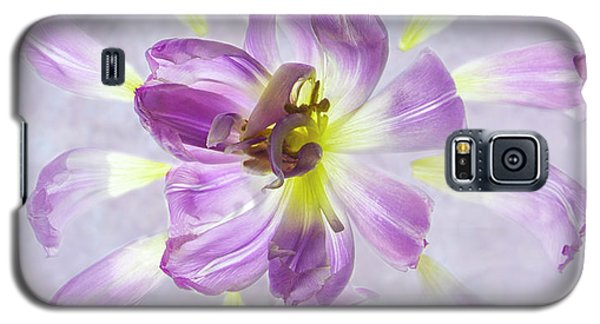 Tulip Patterns  Galaxy S5 Case