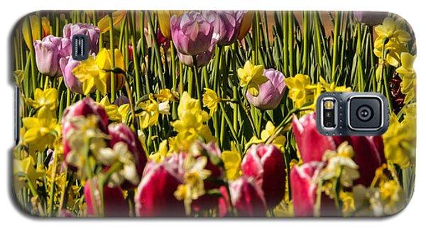 Tulip Spring Galaxy S5 Case