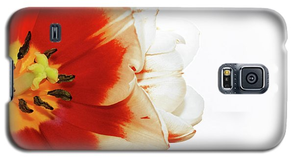 Tulip Statement Galaxy S5 Case
