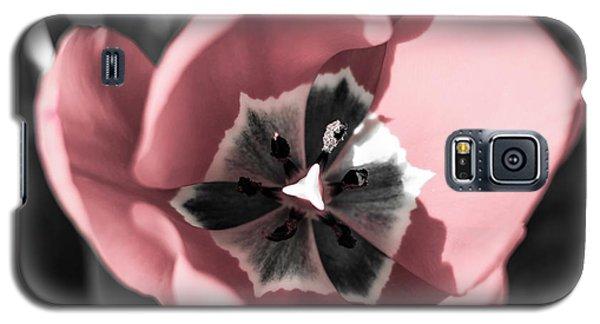 Tulip Up Close Galaxy S5 Case