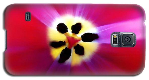Tulip Vivid Floral Abstract Galaxy S5 Case