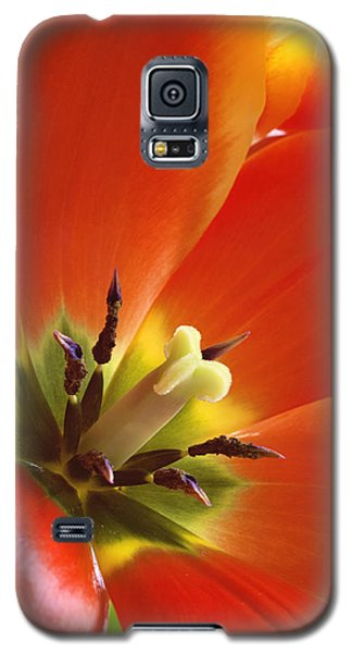 Tuliplicious Galaxy S5 Case