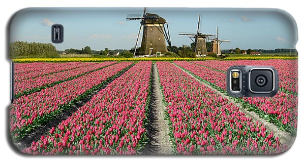 Tulips And Windmills In Holland Galaxy S5 Case