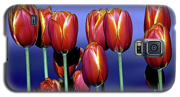 Tulips At Attention Galaxy S5 Case