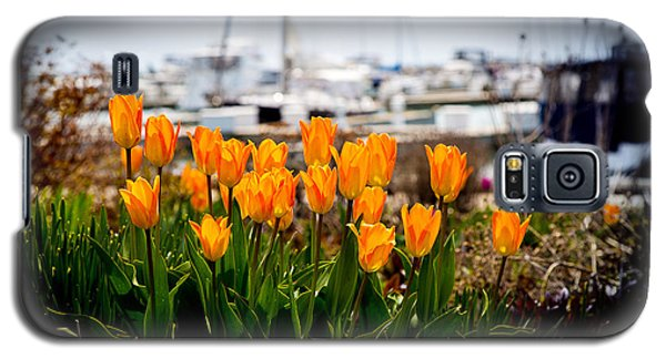 Tulips By The Harbor Galaxy S5 Case