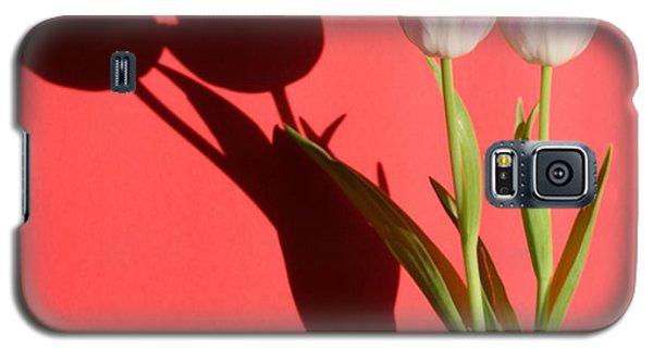 Tulips Casting Shadows Galaxy S5 Case
