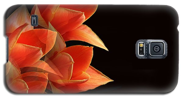 Tulips Dramatic Orange Montage Galaxy S5 Case