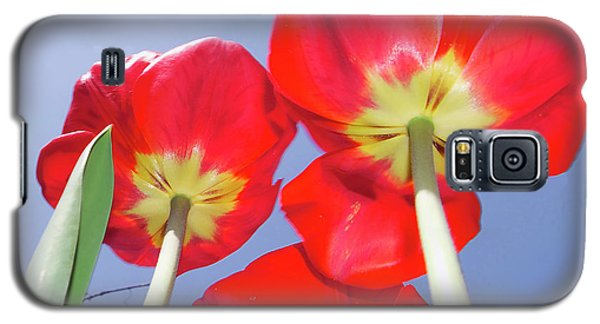 Galaxy S5 Case featuring the photograph Tulips by Elvira Ladocki