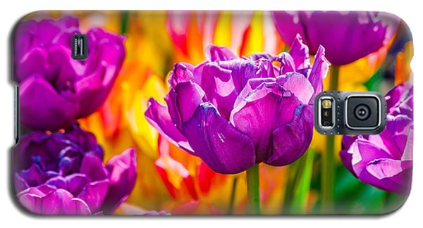 Galaxy S5 Case featuring the photograph Tulips Enchanting 41 by Alexander Senin