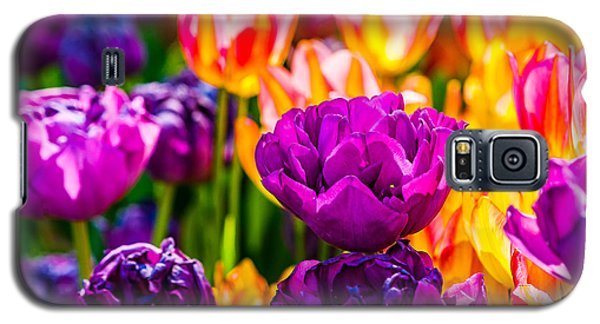 Galaxy S5 Case featuring the photograph Tulips Enchanting 42 by Alexander Senin