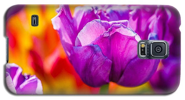 Galaxy S5 Case featuring the photograph Tulips Enchanting 43 by Alexander Senin