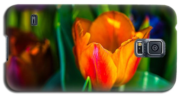 Galaxy S5 Case featuring the photograph Tulips Enchanting 44 by Alexander Senin