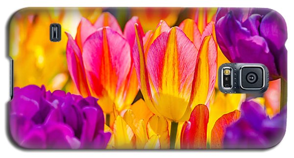 Galaxy S5 Case featuring the photograph Tulips Enchanting 45 by Alexander Senin