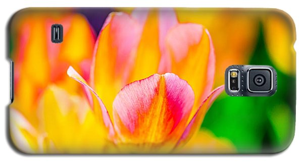 Galaxy S5 Case featuring the photograph Tulips Enchanting 48 by Alexander Senin