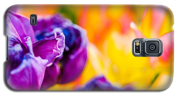 Galaxy S5 Case featuring the photograph Tulips Enchanting 49 by Alexander Senin