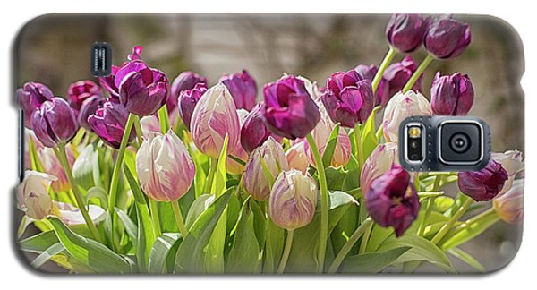 Galaxy S5 Case featuring the photograph Tulips In A Bucket by Patricia Hofmeester