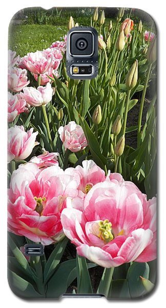 Tulips In Pink Galaxy S5 Case