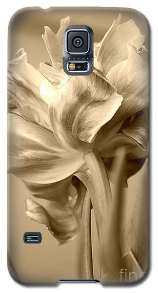 Tulips In Sepia Galaxy S5 Case