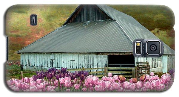 Tulips In Skagit Valley Galaxy S5 Case by Jeff Burgess