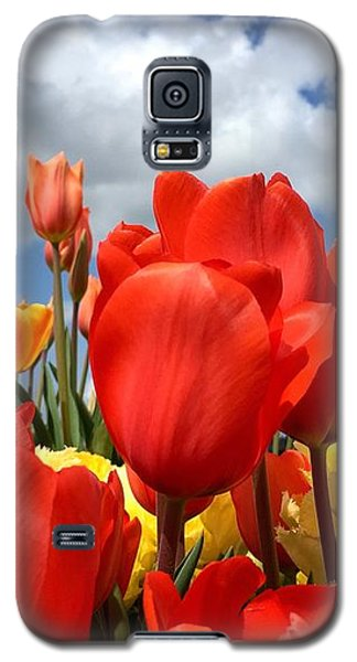 Tulips In The Sky Galaxy S5 Case