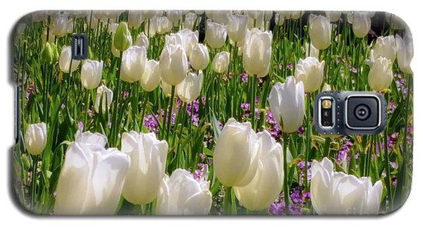 Tulips In White Galaxy S5 Case