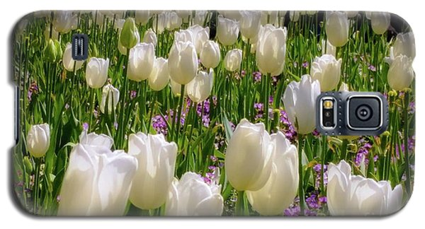 Tulips In White Galaxy S5 Case