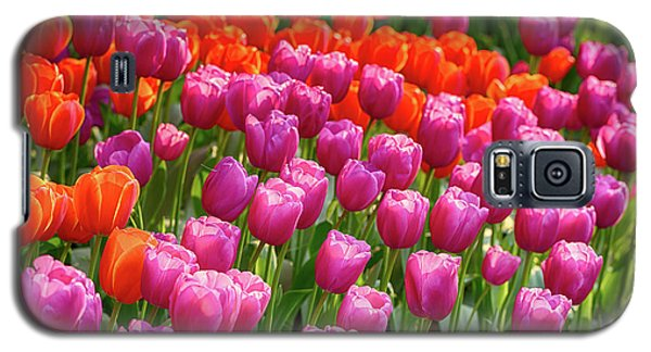 Galaxy S5 Case featuring the photograph Tulips Mean Spring by Mary Jo Allen