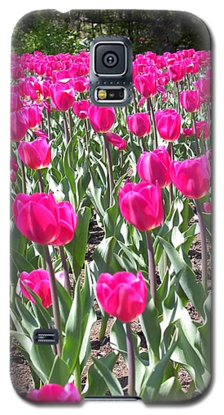 Galaxy S5 Case featuring the photograph Tulips by Mary-Lee Sanders