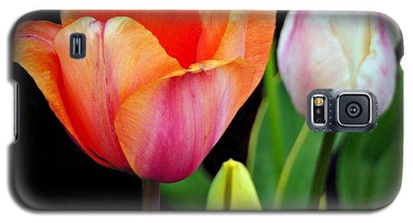 Tulips On Black Galaxy S5 Case