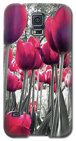 Tulips Tinted Galaxy S5 Case