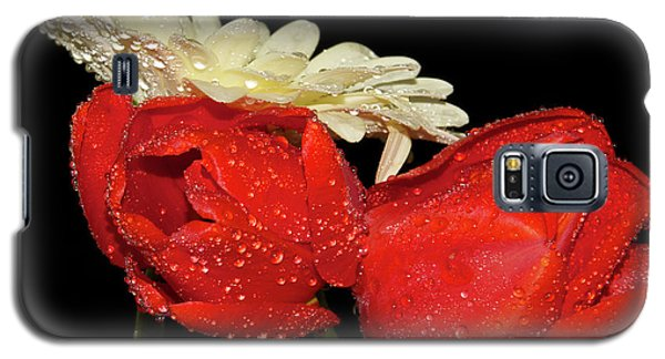 Galaxy S5 Case featuring the photograph Tulips With Gerber by Elvira Ladocki
