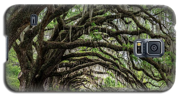 Galaxy S5 Case featuring the photograph Tunnel In Charleston by Jon Glaser