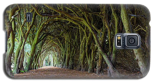 Galaxy S5 Case featuring the photograph Tunnel Of Intertwined Yew Trees by Semmick Photo