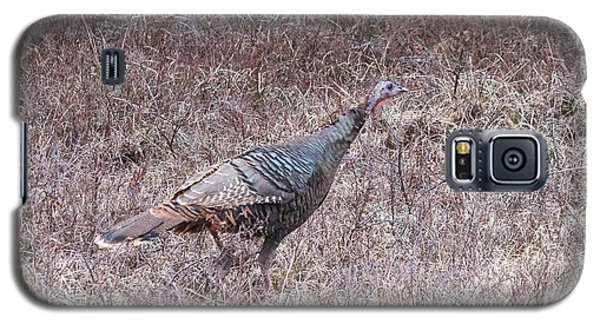 Galaxy S5 Case featuring the photograph Turkey 1155 by Michael Peychich