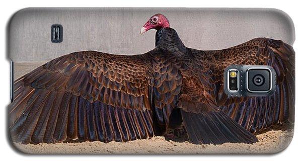 Turkey Vulture Spreading Wings Galaxy S5 Case