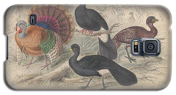 Turkeys Galaxy S5 Case by Rob Dreyer