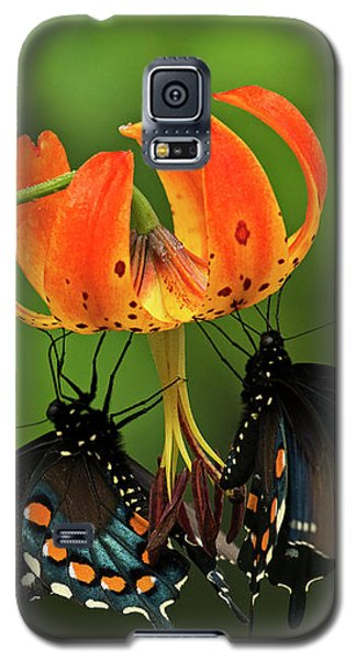 Turks Cap Lilly And Butterflies, Blue Ridge Parkway Galaxy S5 Case