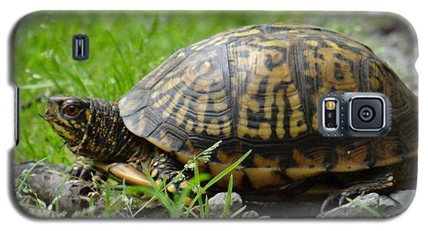 Turtle Crossing Galaxy S5 Case