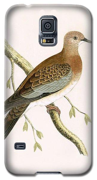 Turtle Dove Galaxy S5 Case