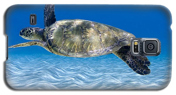 Reptiles Galaxy S5 Case - Turtle Flight -  Part 2 Of 3  by Sean Davey