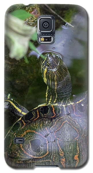 Turtle Getting Some Air Galaxy S5 Case