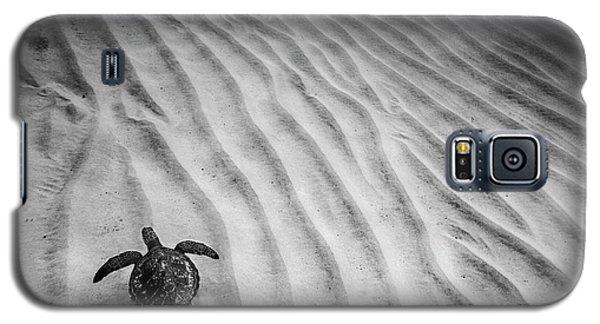 Turtle Ridge Galaxy S5 Case